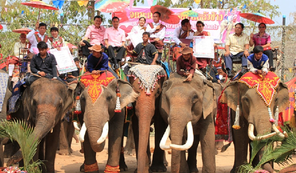 Elephant Back Wedding01_3