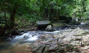 Phuket-Bang-Pae-waterfall_02
